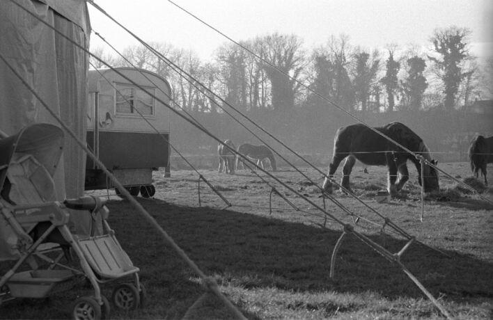 http://www.cirque-pacotille.fr/photos/15-2433-35.jpg